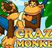 Crazy_Monkey_75x70